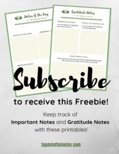 Top Mindful Notes Freebie